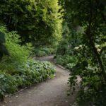 Versteckter Weg im Loki Schmidt Garten