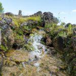Wasserfall im Loki Schmidt Garten