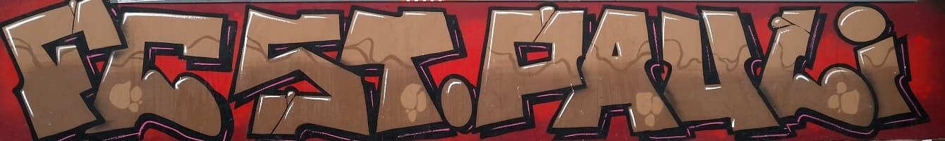 Fcsp Banner Schriftzug