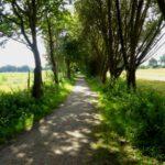 Feldweg von Meilsdorf nach Siek