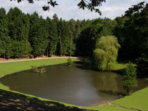 Wildpark Schwarze Berge See