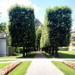 077 Schloss Hellbrunn Allee Schlossgarten