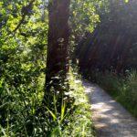 120 Zona Antifa Im Naturschutzgebiet